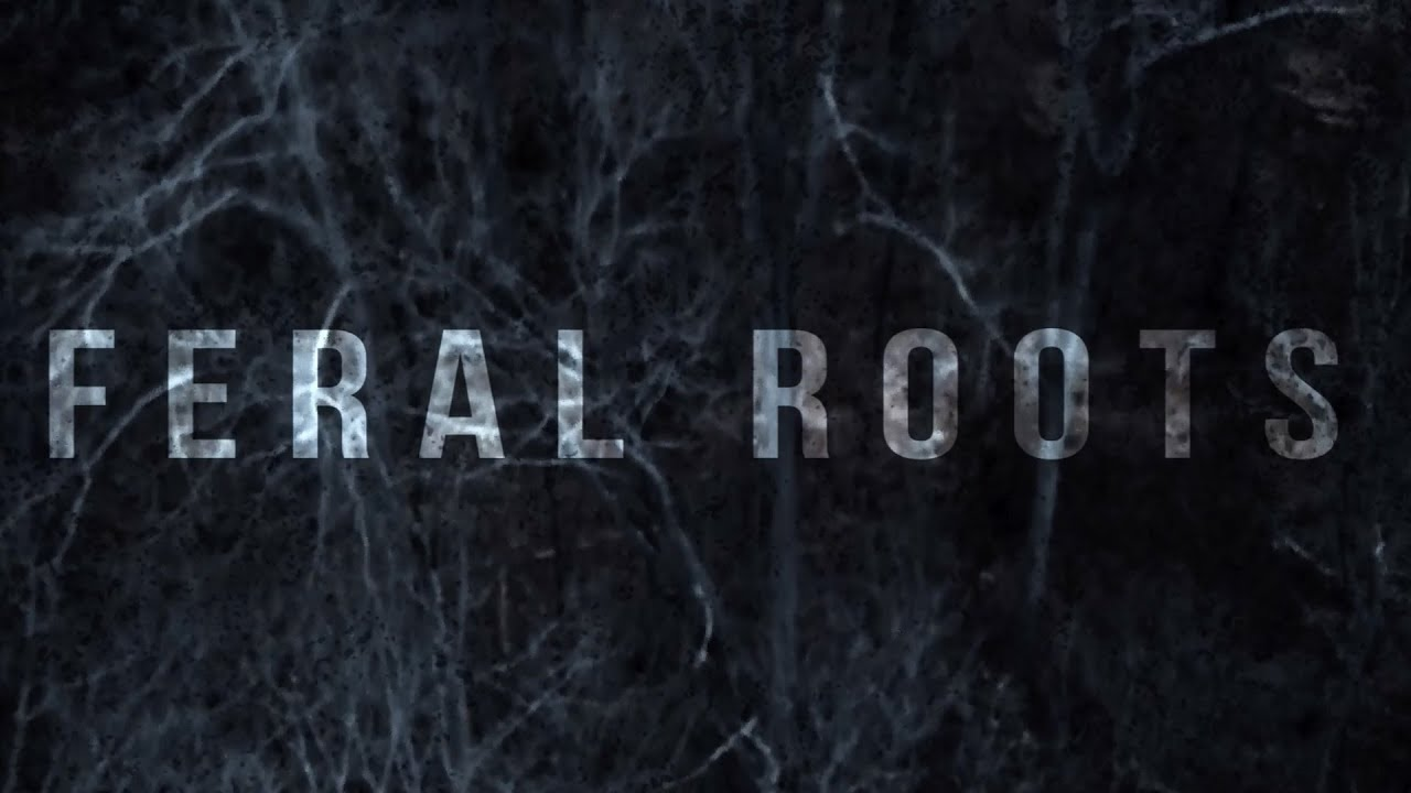 Rival Sons | Official Website